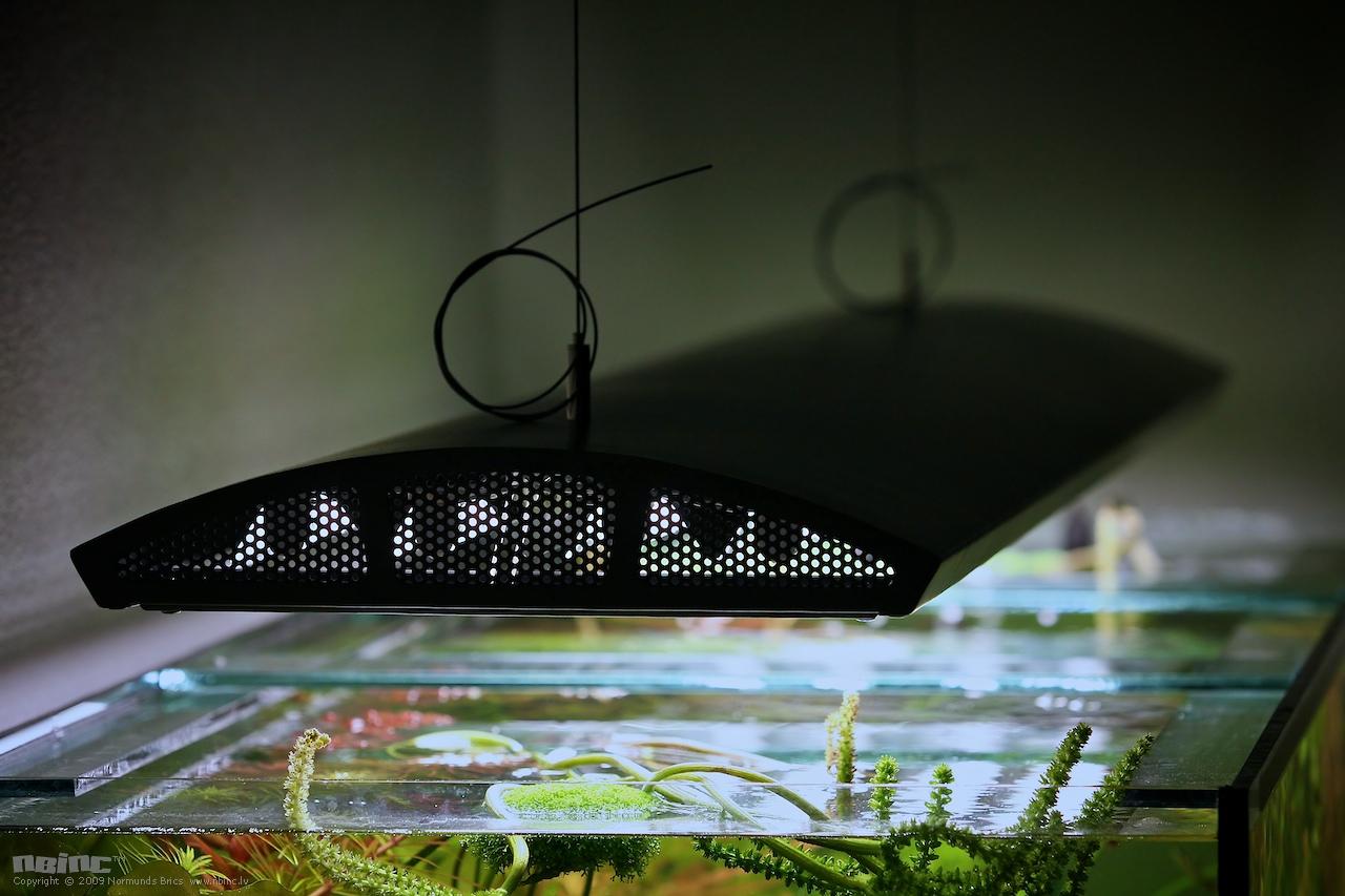 Led лампы для аквариума своими руками 5